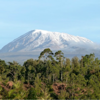 Are You ready to Climb Mount Kilimanjaro?