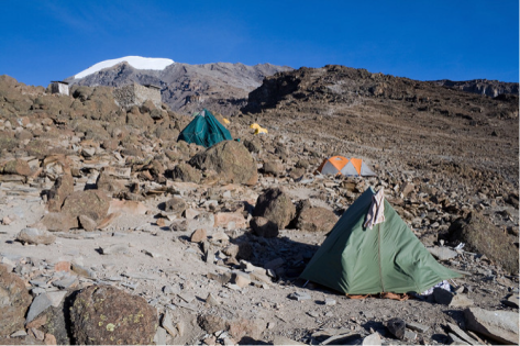 Kilimanjaro10